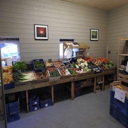 Images étalage légumes